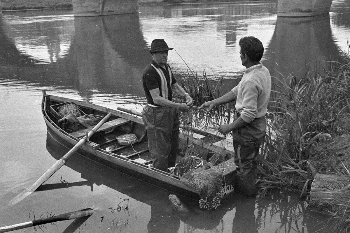 Chapresto – Pesca de peces para San Bernabe (Cofradía pez) 10 Junio 1975